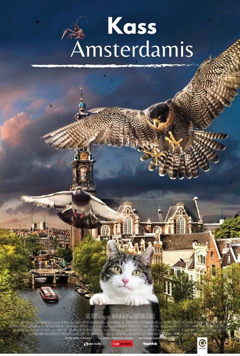 Kass Amsterdamis