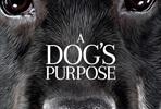 EventGalleryImage_dogs_purpose_ver3.jpg