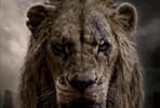 EventGalleryImage_Lion_King_Markus_1350x2000px_Scar.jpg