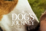 EventGalleryImage_dogs_journey_ver8.jpg