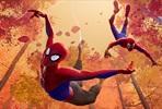 EventGalleryImage_SpiderManKohtiHamahakkiversumia_2_SavonKinot.jpg