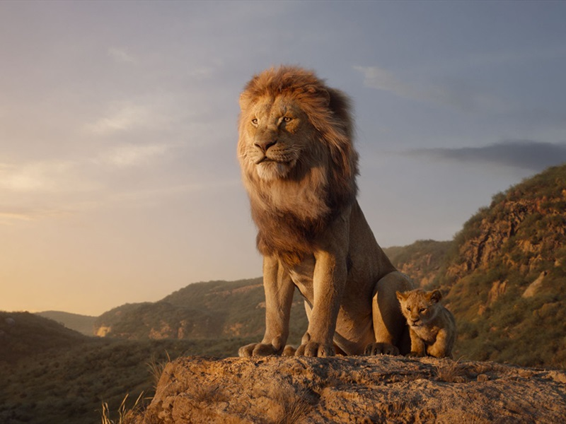 Leijonakuningas Ikäraja
