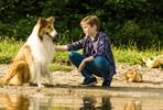 EventGalleryImage_Lassie palaa kotiin 4.jpg
