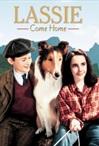 Kirjandus kinos: Lassie, tule koju!